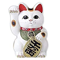 白 椭圆形猫 招财猫 常滑烧 白色 10号 -