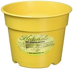 Robert Allen BIO830107512 7-Inch Citrine Yellow Ginko Biodegradable Planter 1