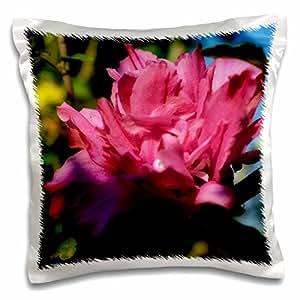 3D Rose a Glamour Effect 添加到鲨鱼图案枕头套 40.64cm x 40.64cm