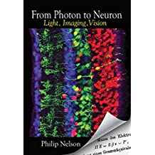 From Photon to Neuron: Light, Imaging, Vision (English Edition)