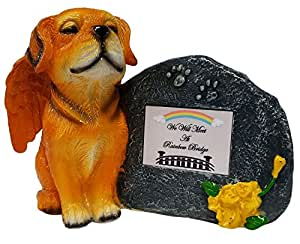 Imprints Plus 金色天使狗纪念雕像,带 Tribute 板和纪念盒 Ashes 出品 Gray Plate Rainbow Bridge