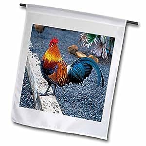 农场动物 - 公鸡 - 旗帜 12 x 18 inch Garden Flag fl_1124_1