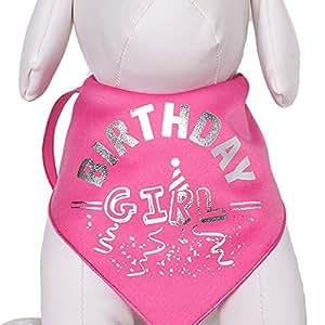 Tail Trends Happy Birthday 狗狗手帕,适合女孩男孩中性宠物 - * 纯棉 The Birthday Girl 大