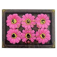 九州花朵服务 花卉假发泡剂 栀子花香 6轮装 PI 753756