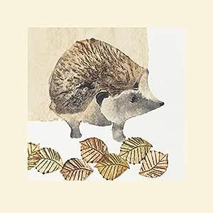The Art Group Julia Burns(刺猬)- 印刷品 30 x 30cm 多色 40 x 40 x 1.3 cm MPPR45631