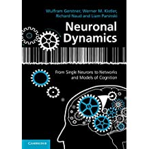 Neuronal Dynamics: From Single Neurons to Networks and Models of Cognition (English Edition)