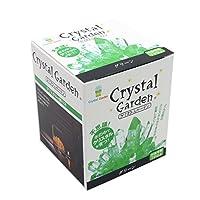 不可思议 在水中培育水晶 Crystal Garden *