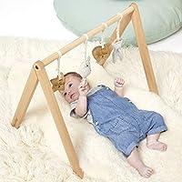 The Little Green 绵羊 A Frame 天然婴儿健身房 1.3 kg 0-18 个月 多色