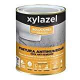 PAINTING WATER Xylazel/750 ml