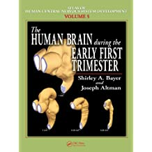 The Human Brain During the Early First Trimester (Atlas of Human Central Nervous System Development Book 5) (English Edition)