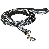 Mirage Pet Products 学院风条纹尼龙丝带狗绳,适合狗狗和猫咪,1.91 厘米 x 1.83 厘米,浅蓝色/白色