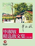 毕淑敏经典散文集(共19册)