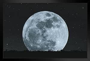 Poster Foundry 夜晚全月亮带星剪影草草草坪 裱框海报 20x14 inches 290851