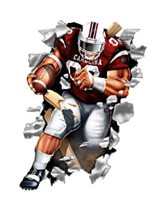 South Carolina Gamecocks Football Player Wallcrasher