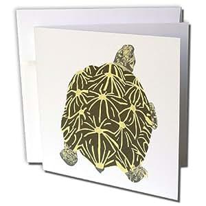 CherylsArt 动物野生星龟 - 星龟画 - 贺卡 Set of 6 Greeting Cards