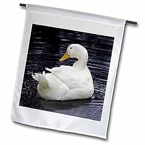 农场动物–白色 pekin Duck–旗帜 18 x 27