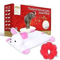 Taipatex泰国原装进口 迪士尼的小伙伴(小兔子)卡通枕 63cmx35cmx5cm(配送梅花枕太空纳米粒子*1) [新老包装交替 随机发货]