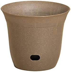 Allied Precision EasyCare 陶瓷花盆,7 英寸,橄榄*