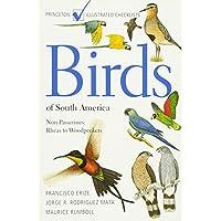 Birds of South America: Non-Passerines, Rheas to Woodpeckers