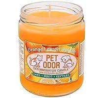 Pet 异味*蜡烛 橙色柠檬喷溅