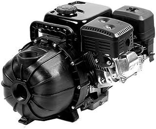 Pentair Water 1542p-65sp 6.5 Hp, Poly Transfer Pump