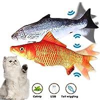Wordcam 2 件装移动猫踢鱼玩具,仿真毛绒仿真电动摇摆鱼猫玩具猫薄荷踢球玩具,毛绒互动猫玩具,非常适合咬、咀嚼和踢球(鲑鱼+鲤鱼)