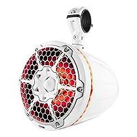 DS18 CF6TPBNEO Hydro 一对黑色海洋 6.5 路 Wakeboard Tower 扬声器带 1.5 英寸压缩驱动 - 150W *大 450W RMSNXL-10TPNEO/WH 10 Inch 白色
