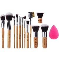 EmaxDesign 12 + 1 化妆刷套装,12件专业粉底液腮红眼妆液粉霜化妆品刷子和1件玫红色美容海绵搅拌器
