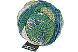 Schoppel-Wolle 多色毛线球 多种颜色 13 x 13 x 10 cm