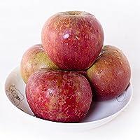 云南邵通丑苹果10斤 中小果 野生苹果 新鲜水果