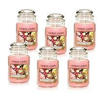 Yankee Candle Company Fresh Cut Roses 22-Ounce Jar Candle, Large, Set of 6