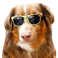 G006 宠物狗 80 年代复古太阳镜带护目镜