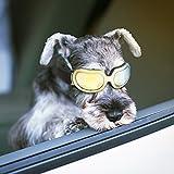 Enjoying Dog 太阳镜 – 小型犬护目镜 防紫外线防风可调护目镜 适用于小狗小猫 黄色