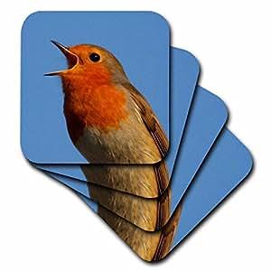 3dRose cst_46947_1 A Little Bird Told Me European Robin, Erithacus Rubecula, Robin, Robin Redbreast, Bird, Birds Soft Coasters, (Set of 4)