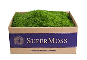 Super Moss Sisal 3-4 lbs Bulk 7 59834 29981 3
