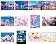 固定夹 人气花纹 明信片 12种 各1张 共12张 一套 樱花
