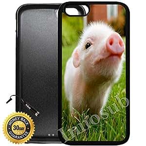 Innosub 定制 iPhone 6 Plus 手机壳 -FBA Cute Baby Pig