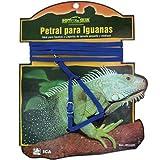 Dream RS1600 Petral for Iguanas