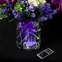 Lavish Home 防水 LED 灯水下潜水,电池供电,遥控 10-LED 装饰,适合派对、婚礼等多种场合,多色