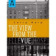 The View from the Vue (English Edition)