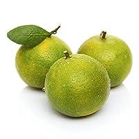 德庆皇帝柑9斤 贡柑 薄皮柑橘 新鲜水果