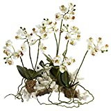 Nearly Natural 4836 Phalaenopsis Orchid Floral Arrangement Set, Mini, Coral