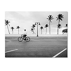 "Trademark Fine Art Florida Beach Bike by Preston Hanging Art Piece, 24""x32"""