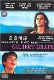 恋恋情深(DVD)