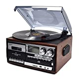 WINTECH 多功能音频播放器 褐色 唱片・磁带・AM・FM・CD・SD・USB・AUX KRP-308MS