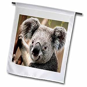 florene animals–考拉熊特写–旗帜 12 x 18 inch Garden Flag