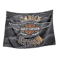 HARLEY-DAVIDSON 复古 Bar & Shield 翅膀 Estate 旗帜 双面17S4918