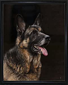 美国经典德国牧羊犬-JAIJOH139722 印刷品 33.02cm x 26.67cm Jai Johnson Flat Black Metal Frame 13.25x10.75 139722-24-15FUSA