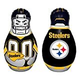NFL Pittsburgh Steelers Tackle Buddy Bag, One Size, Team Color