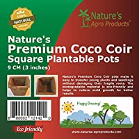 Nature's Premium 可可椰子花盆 Square 3 Inch